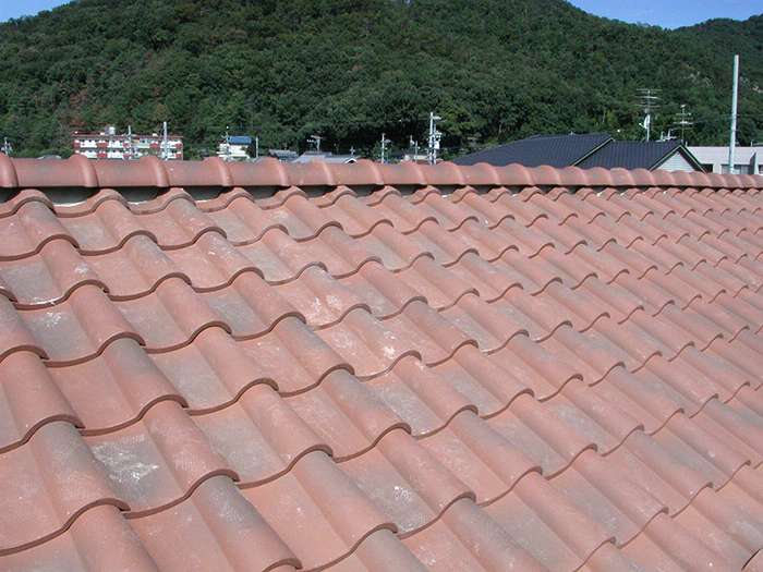 img_roof002_003