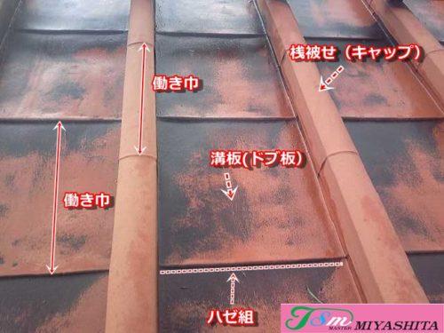 屋根、解説