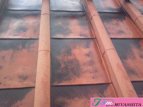 屋根、鋼板、特殊葺き