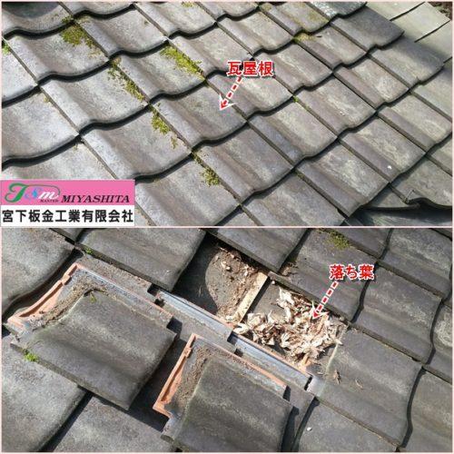 瓦屋根、落ち葉、内側